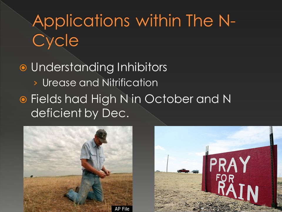 Applications within The N-Cycle
