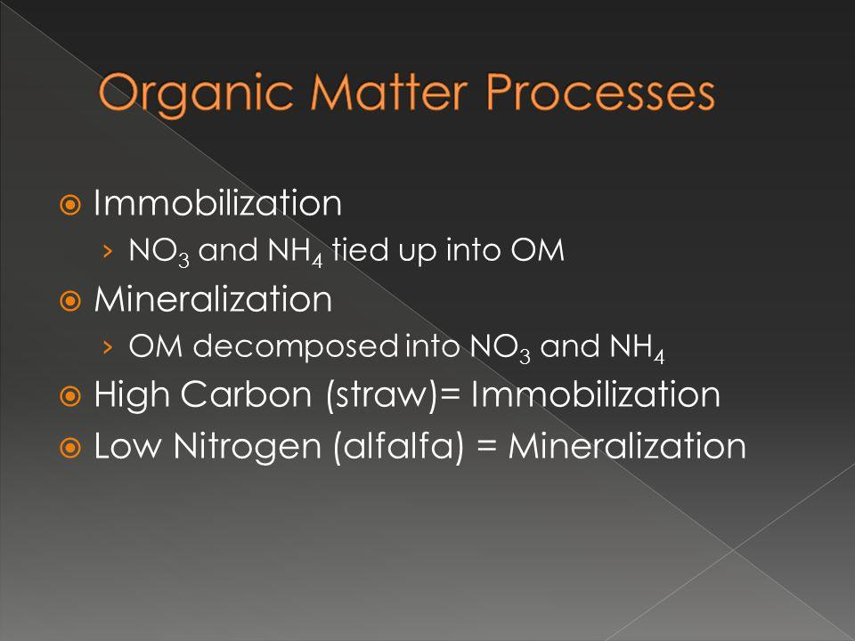 Organic Matter Processes