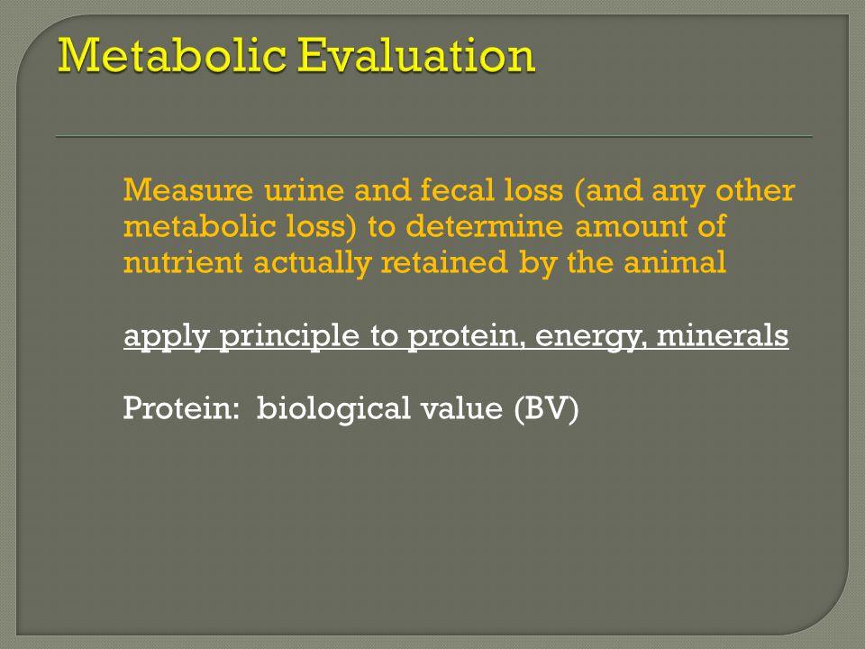 Metabolic Evaluation
