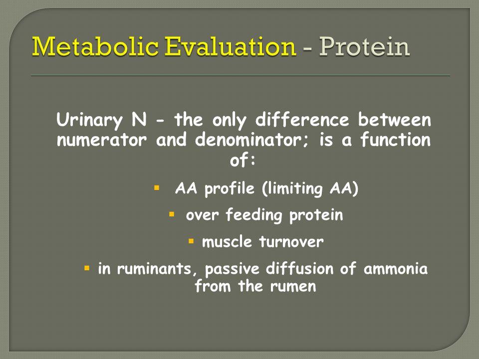 Metabolic Evaluation - Protein