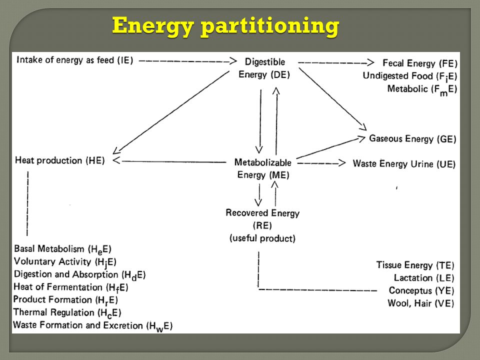 Energy partitioning