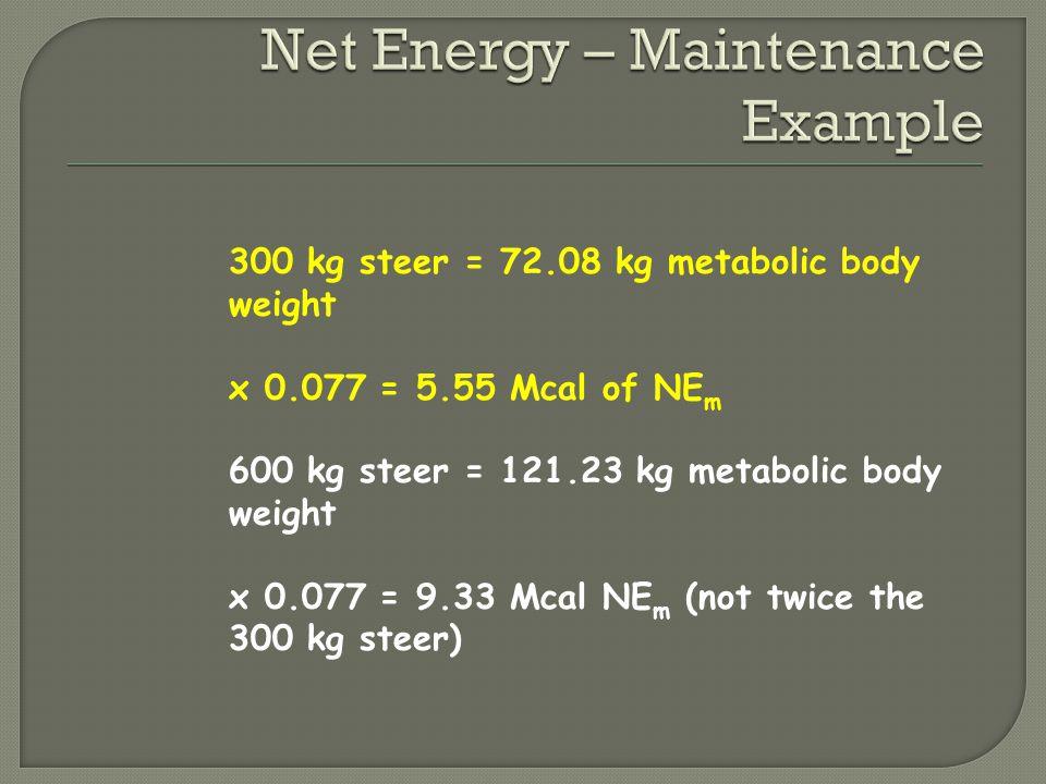 Net Energy – Maintenance Example