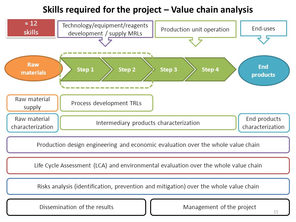 Skills required for the project – Value chain analysis