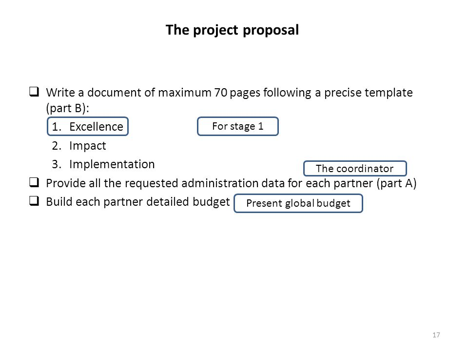 The project proposal Write a document of maximum 70 pages following a precise template (part B): Excellence.