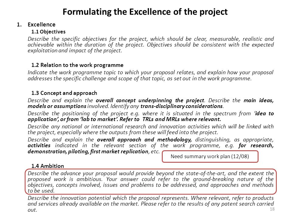 Formulating the Excellence of the project