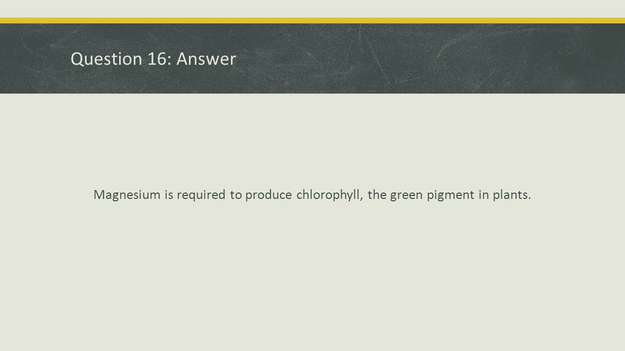 Question 16: Answer Magnesium is required to produce chlorophyll, the green pigment in plants.