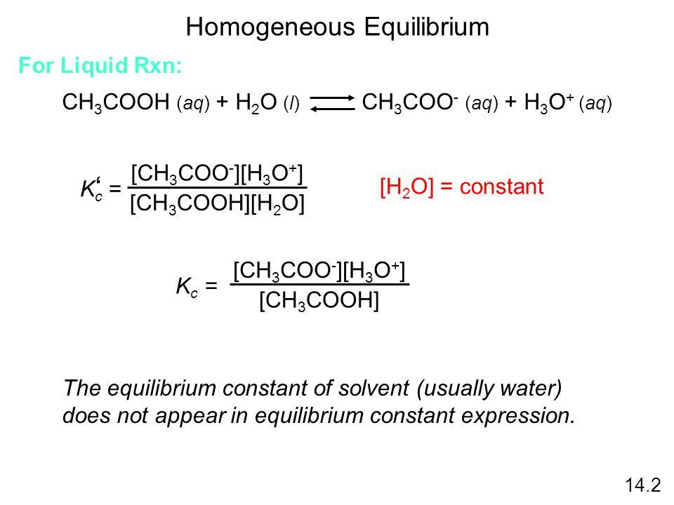 Homogeneous Equilibrium