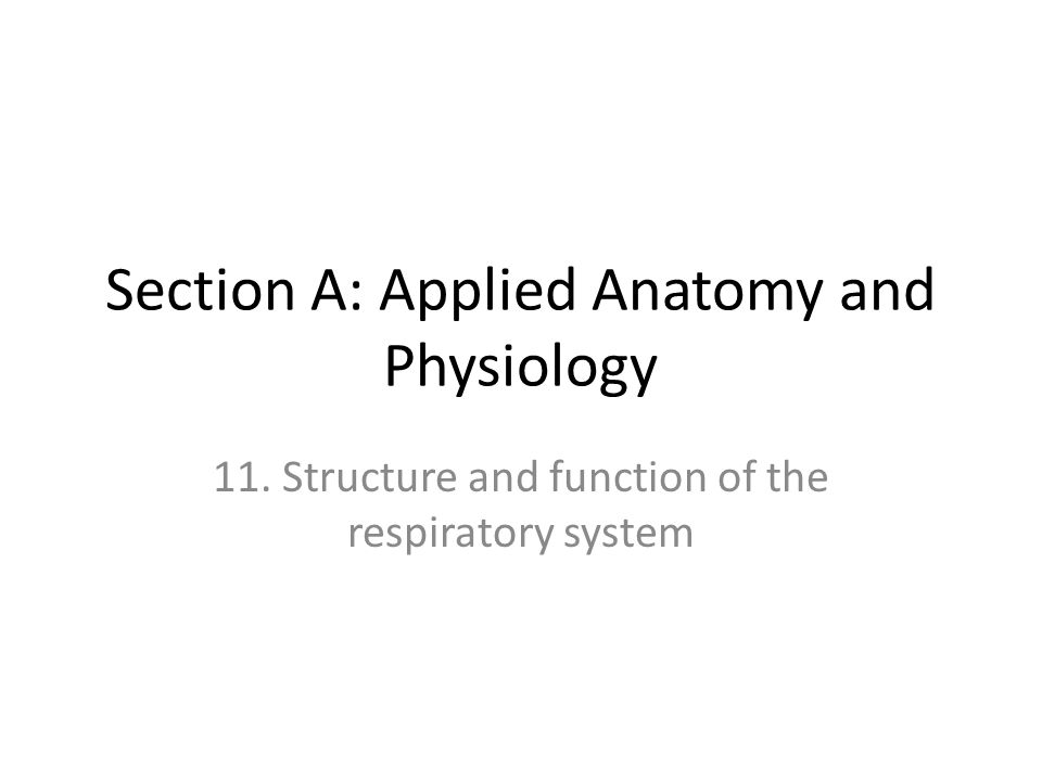 Section A: Applied Anatomy and Physiology - ppt video online download
