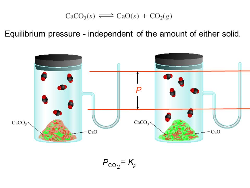 Equilibrium pressure - independent of the amount of either solid.