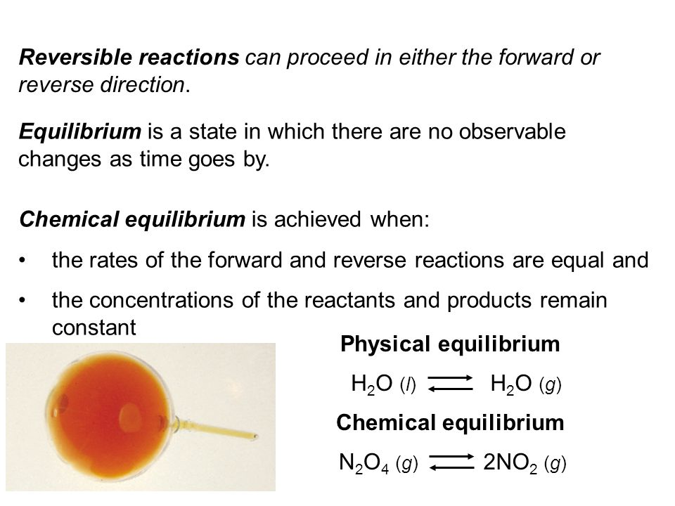 Reversible reactions can proceed in either the forward or reverse direction.