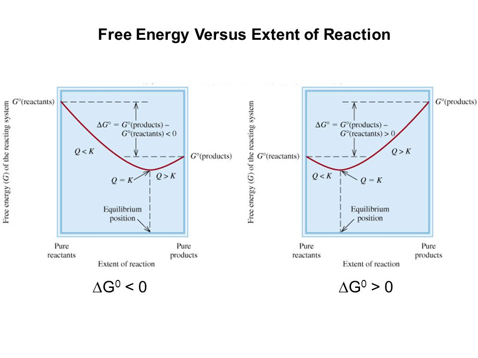 Free Energy Versus Extent of Reaction