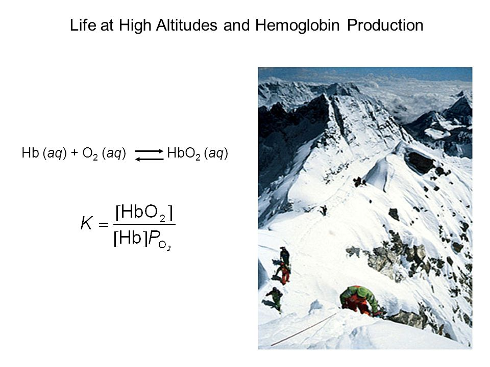 Life at High Altitudes and Hemoglobin Production