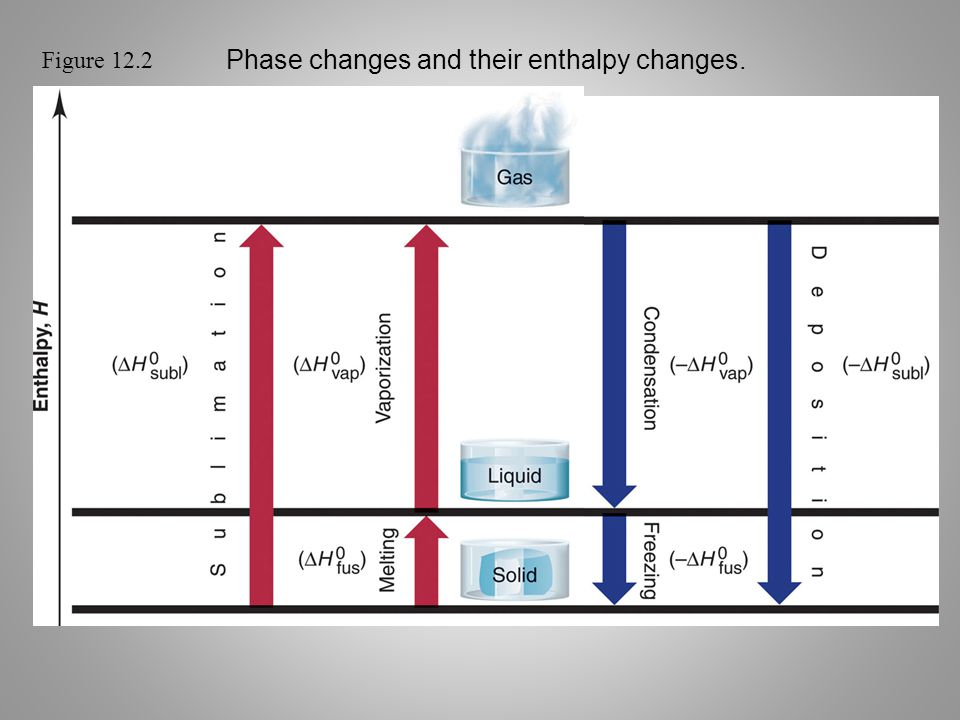 Phase changes and their enthalpy changes.