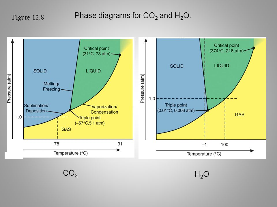 Phase diagrams for CO2 and H2O.
