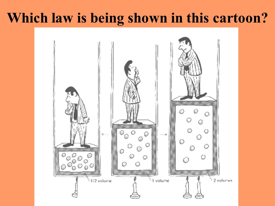 Which law is being shown in this cartoon