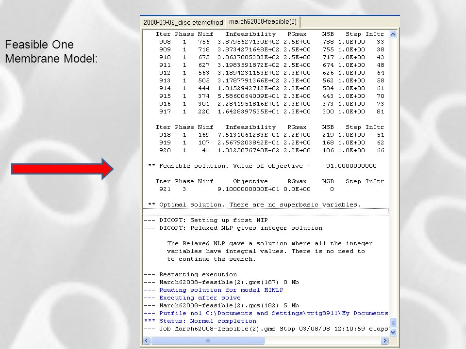 GAMS Solution Feasible One Membrane Model: