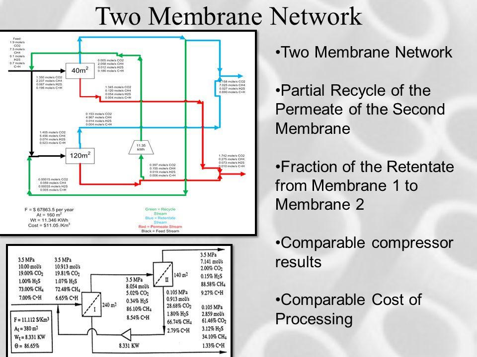 Two Membrane Network Two Membrane Network