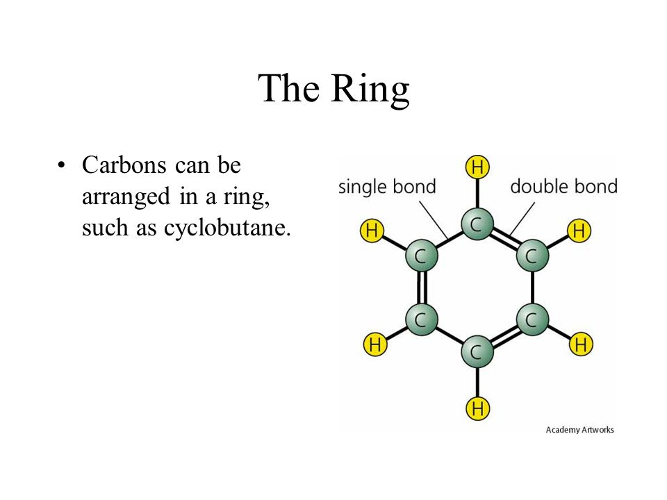 The Ring Carbons can be arranged in a ring, such as cyclobutane.