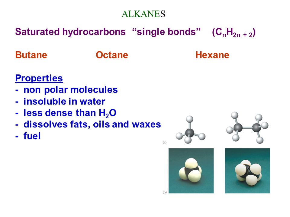 ALKANES Saturated hydrocarbons single bonds (CnH2n + 2) Butane Octane Hexane.