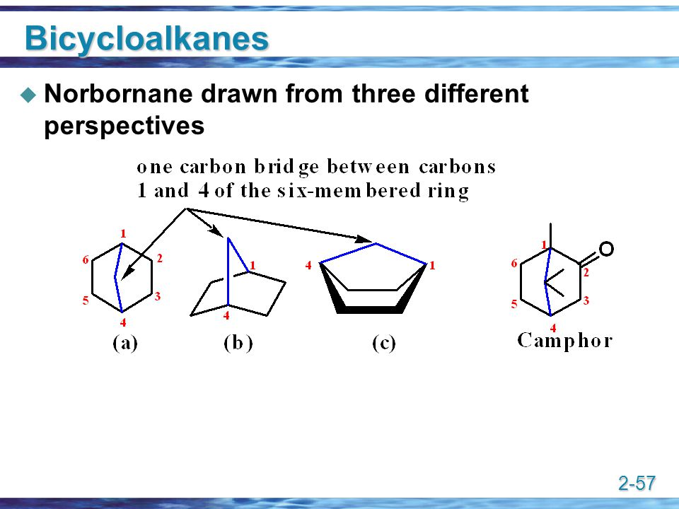 Bicycloalkanes Norbornane drawn from three different perspectives