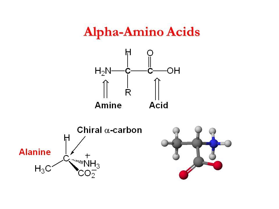 Alpha-Amino Acids