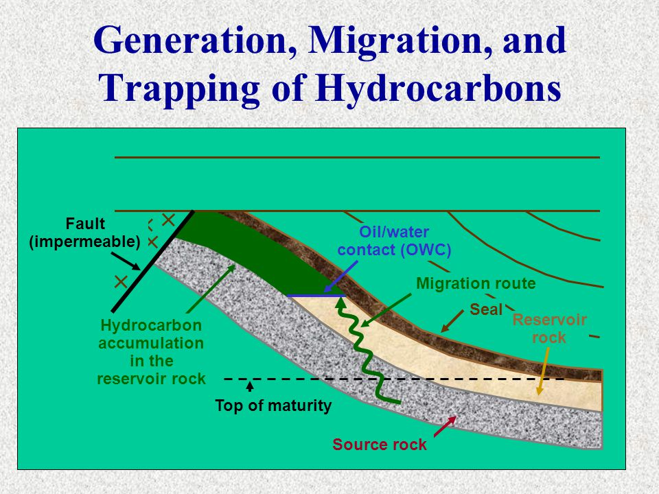 Generation, Migration, and Trapping of Hydrocarbons