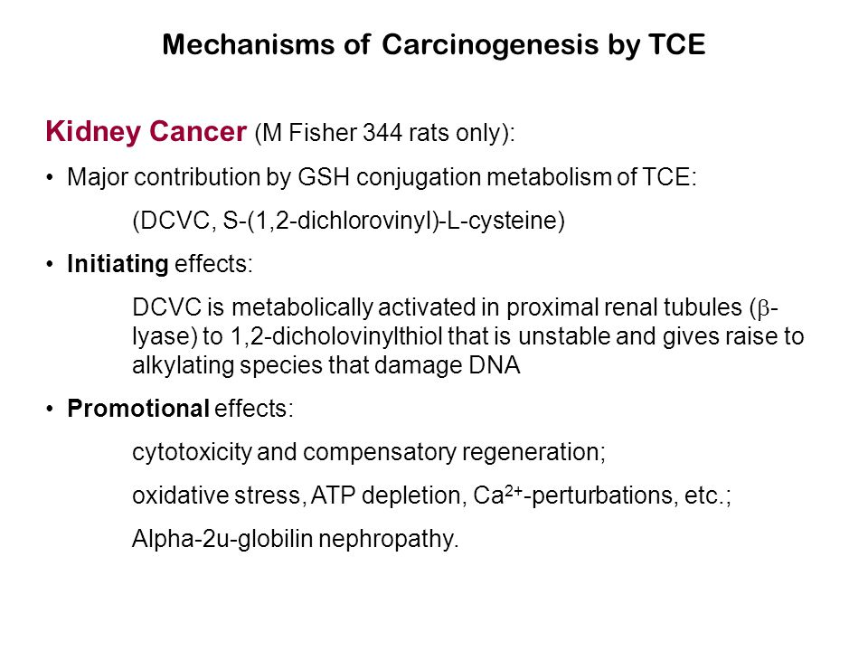 Mechanisms of Carcinogenesis by TCE