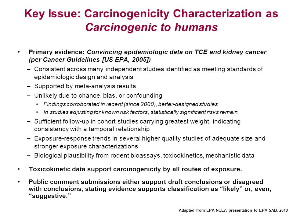 Key Issue: Carcinogenicity Characterization as Carcinogenic to humans