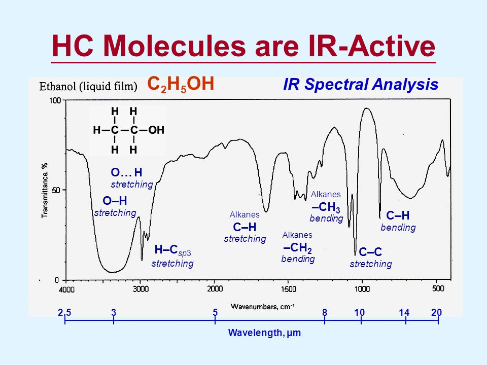HC Molecules are IR-Active