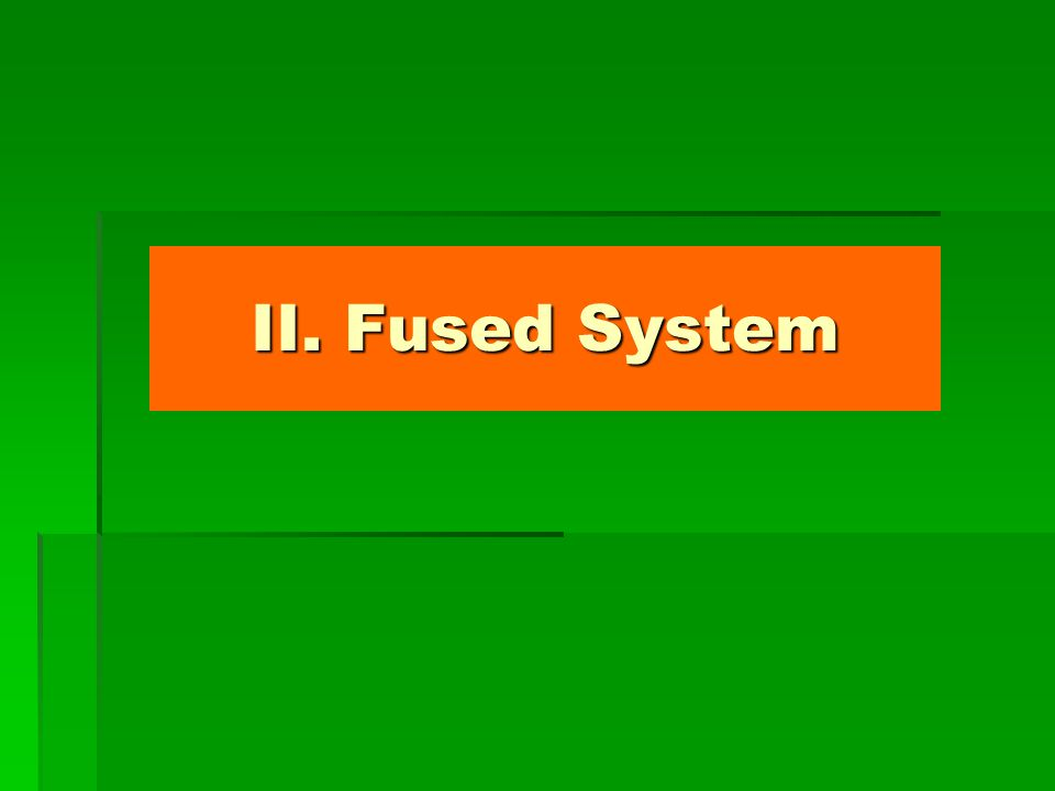 II. Fused System