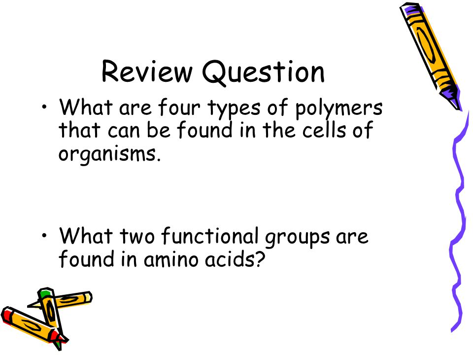 Review Question What are four types of polymers that can be found in the cells of organisms.