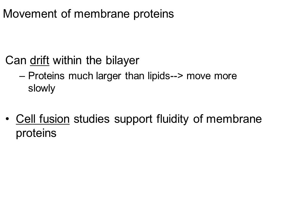 Movement of membrane proteins