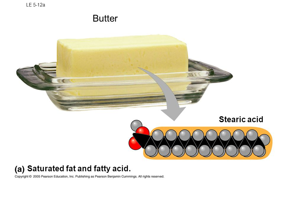 LE 5-12a Butter Stearic acid Saturated fat and fatty acid.