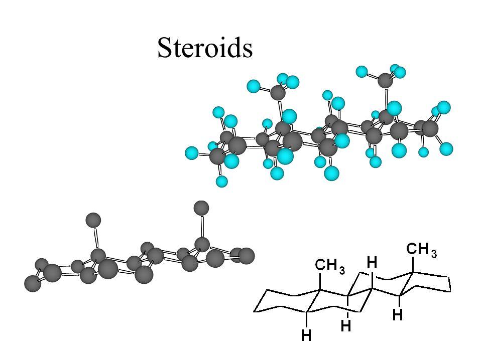 Steroids 24 24