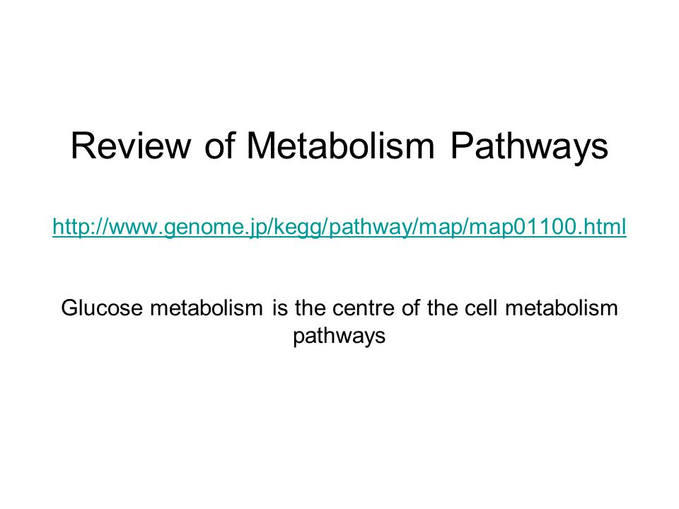 Review of Metabolism Pathways http://www. genome