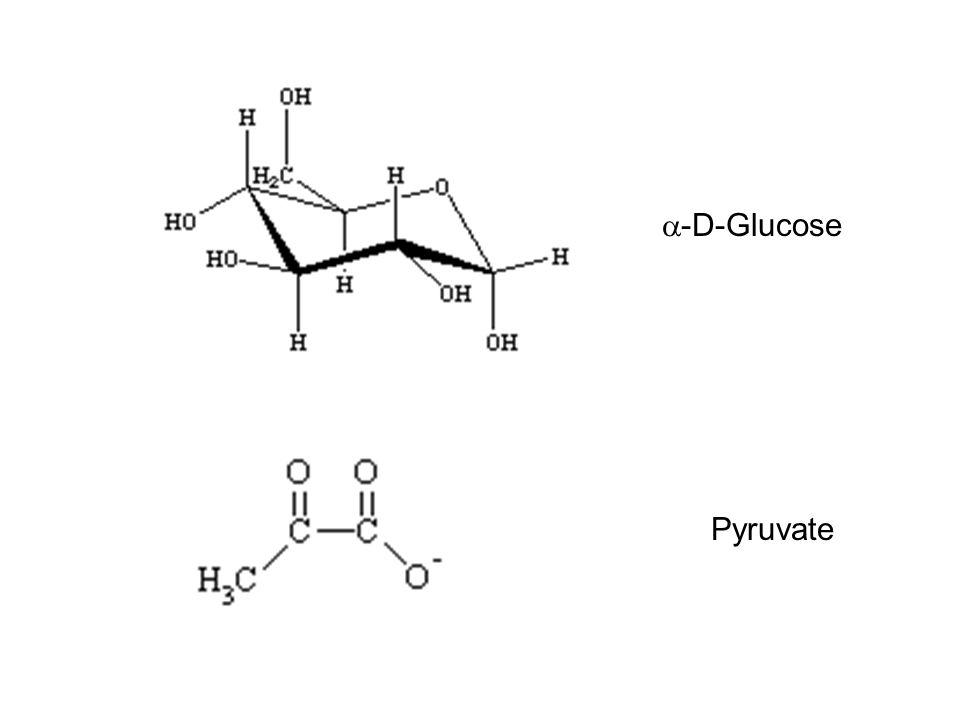 a-D-Glucose Pyruvate