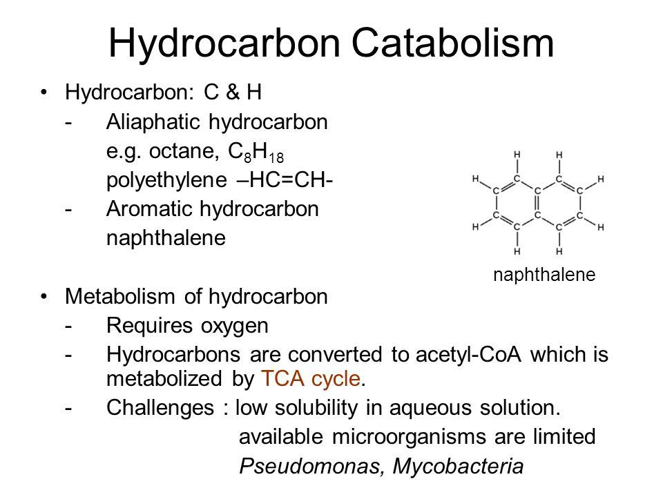 Hydrocarbon Catabolism