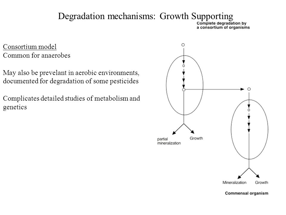 Degradation mechanisms: Growth Supporting