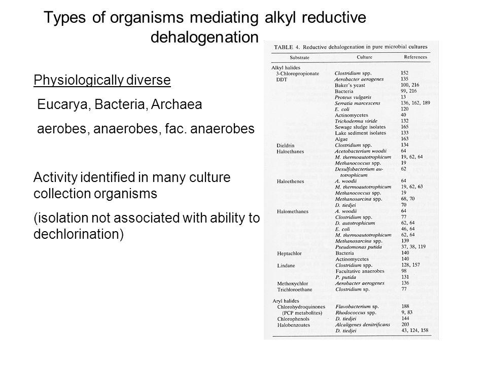 Types of organisms mediating alkyl reductive dehalogenation