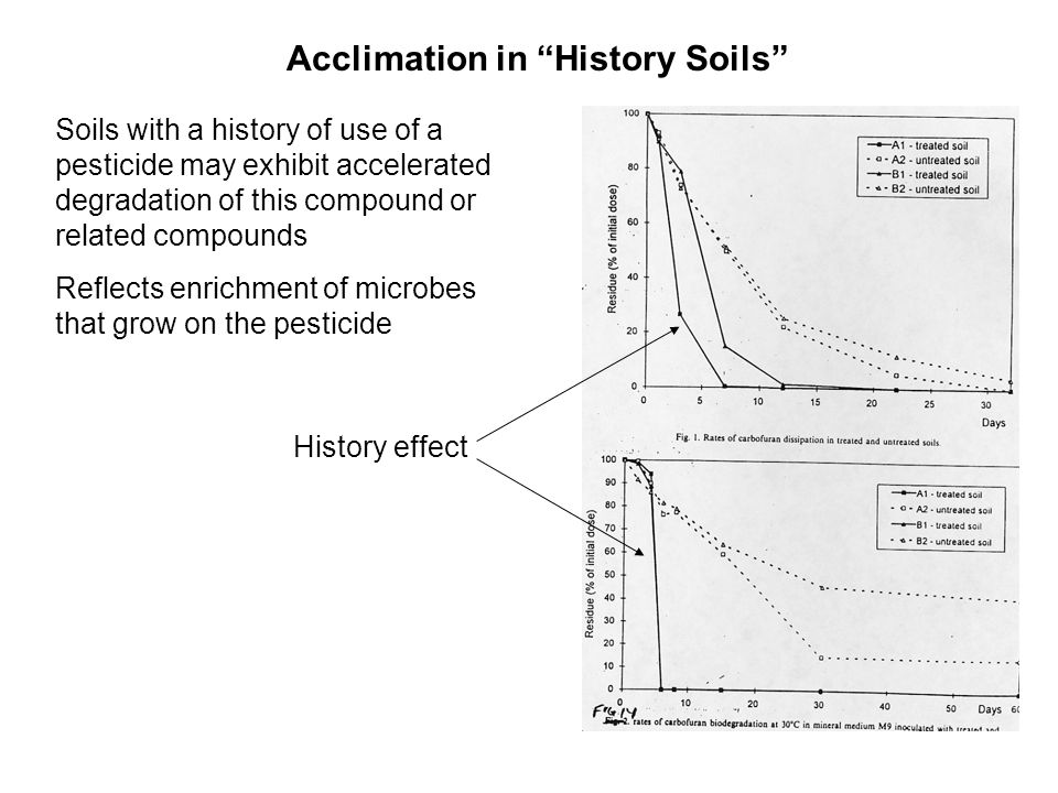 Acclimation in History Soils