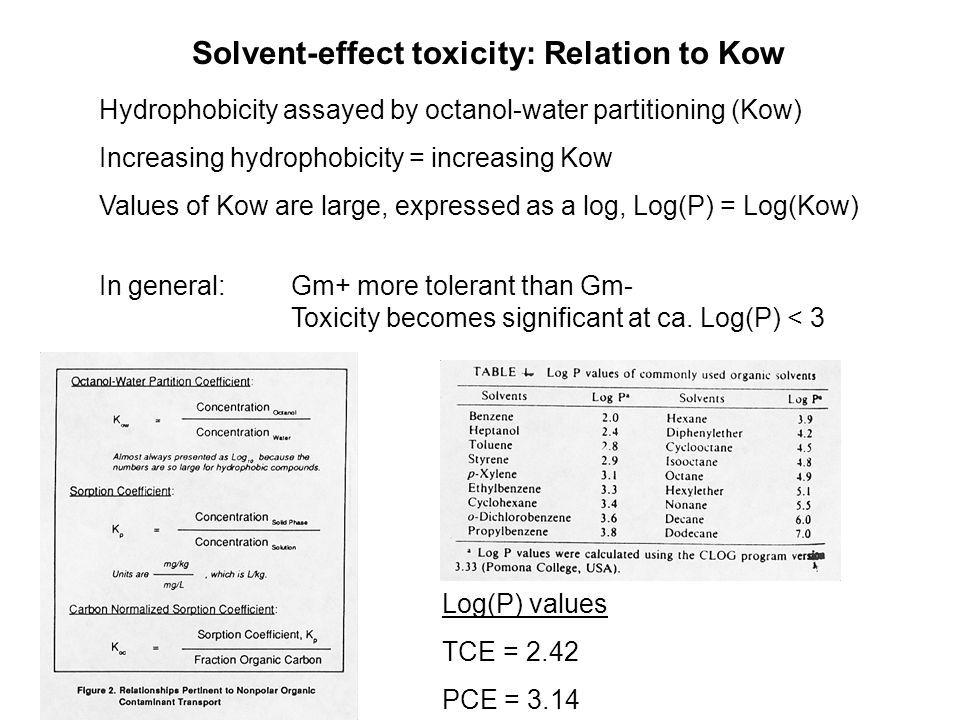 Solvent-effect toxicity: Relation to Kow