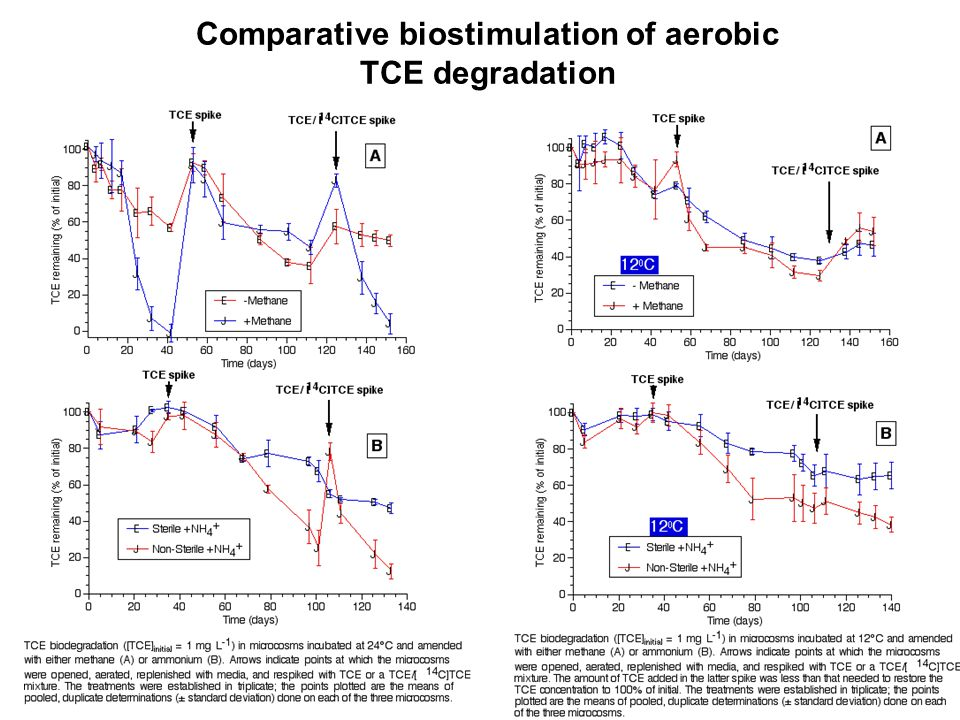 Comparative biostimulation of aerobic TCE degradation