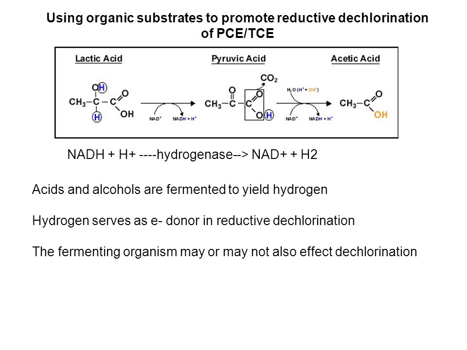 Using organic substrates to promote reductive dechlorination of PCE/TCE