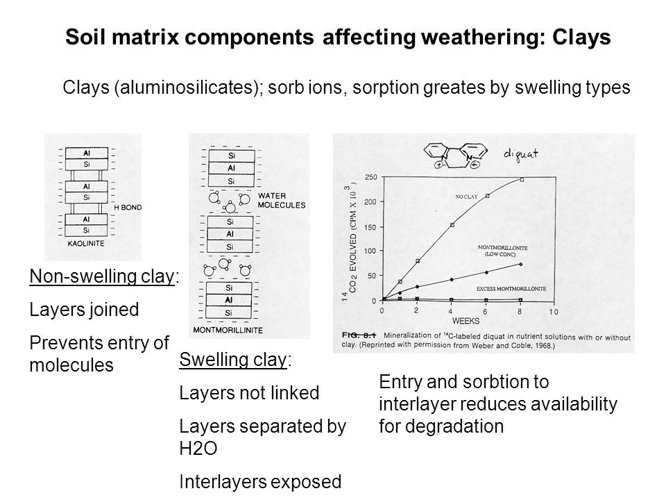 Soil matrix components affecting weathering: Clays