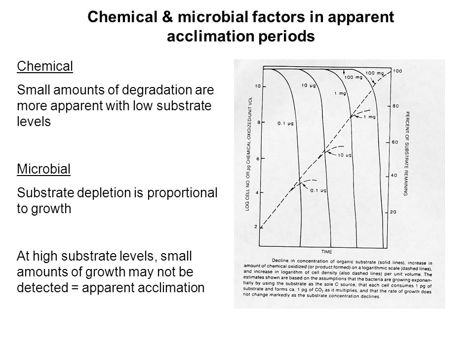 Chemical & microbial factors in apparent acclimation periods