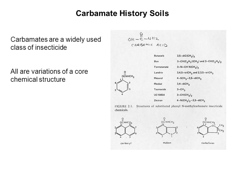 Carbamate History Soils