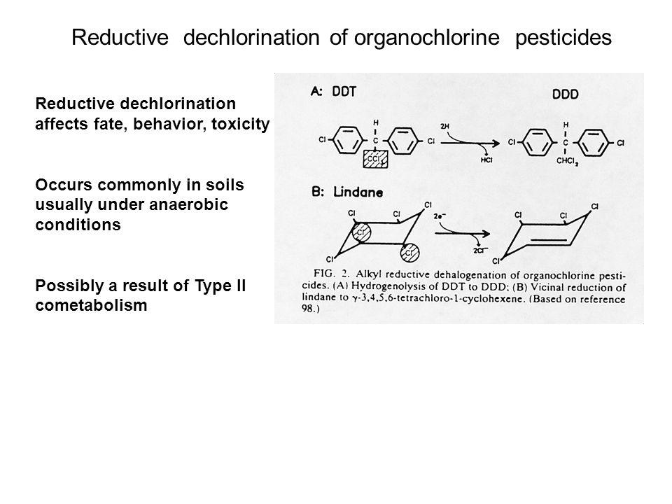 Reductive dechlorination of organochlorine pesticides