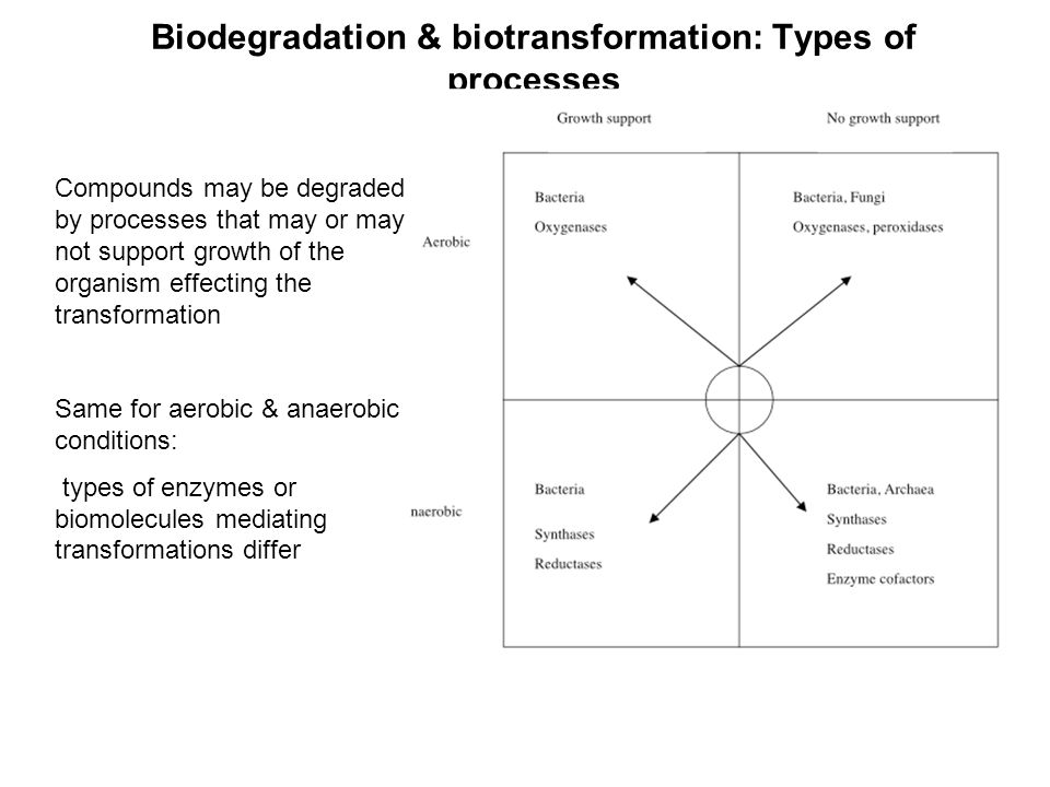 Biodegradation & biotransformation: Types of processes