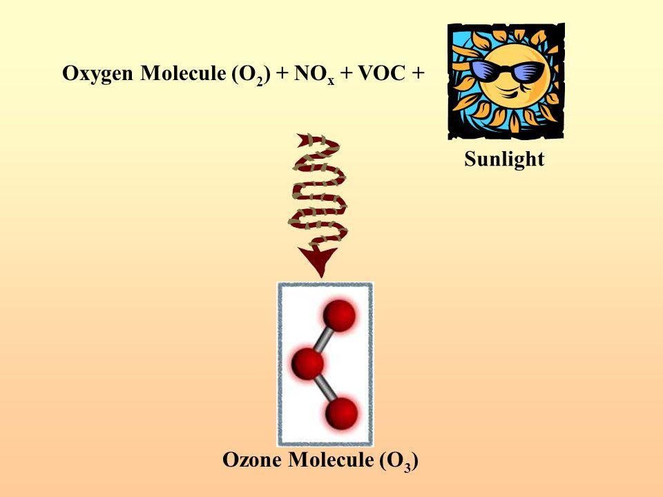 Oxygen Molecule (O2) + NOx + VOC +