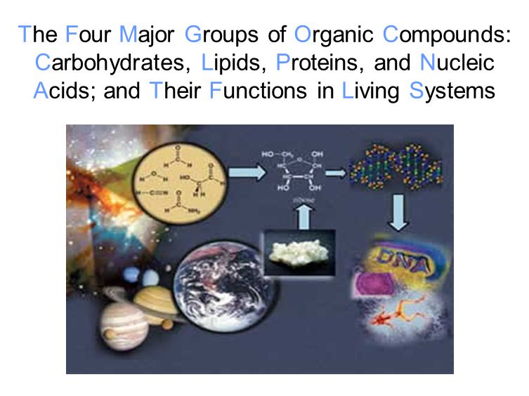 The Four Major Groups of Organic Compounds: Carbohydrates, Lipids, Proteins, and Nucleic Acids; and Their Functions in Living Systems
